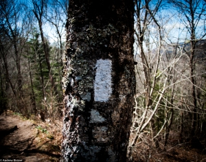 Marker for the Appalachian Trail